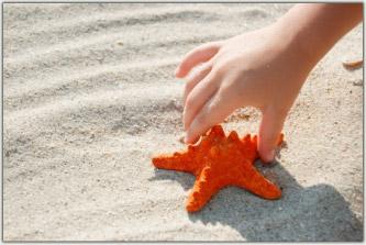 deniz-yildizi Yardımseverlik İyilik Kısa hikayeler